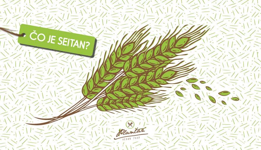 Čo je seitan?